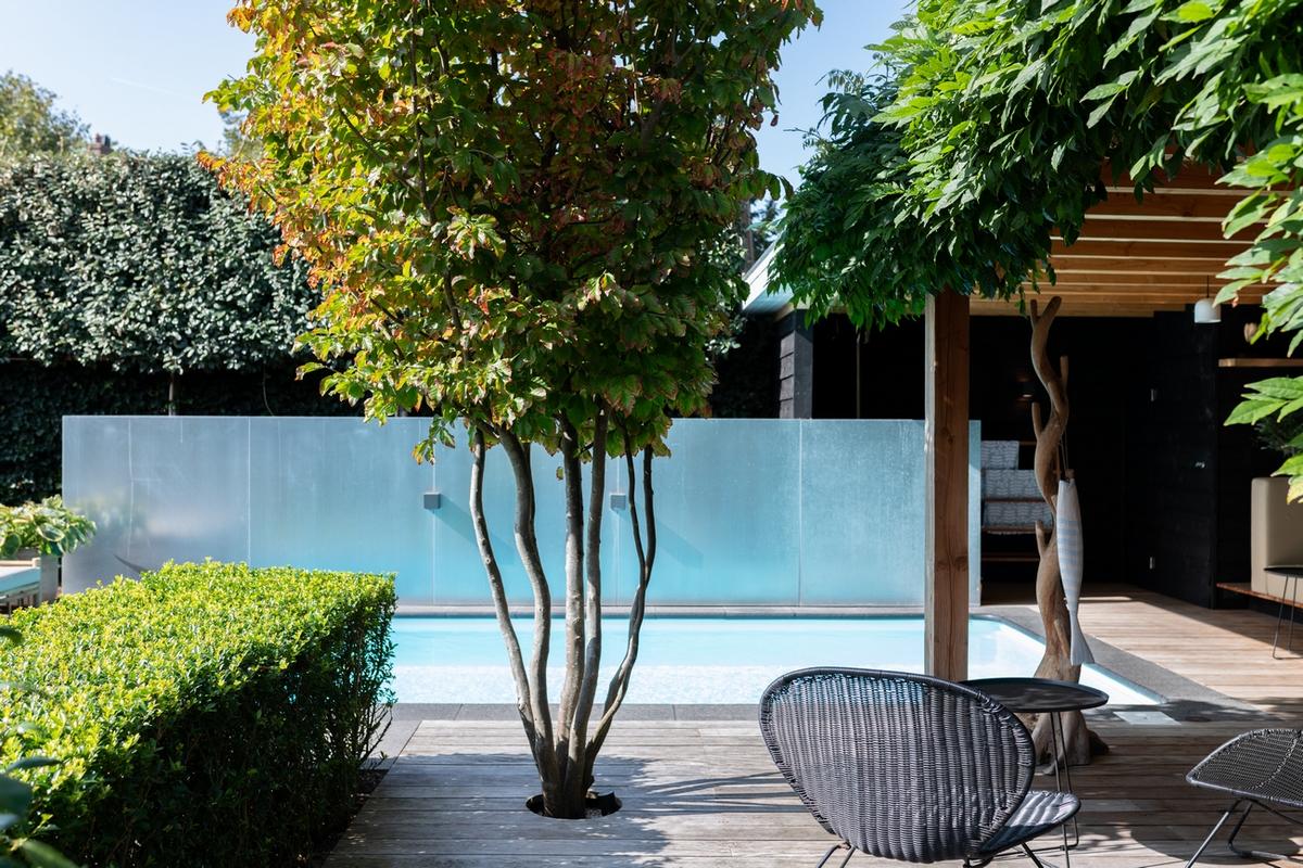 Polypropyleen zwembad met een mooie boom
