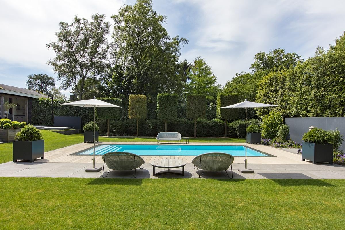 Starline overloopzwembad in Hierden met lounge